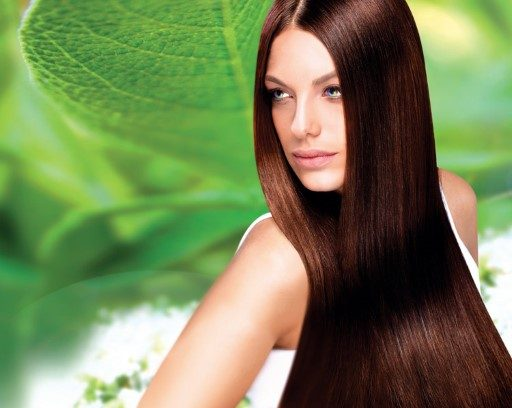 Organic Colour Systems - brunette